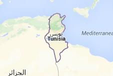 Túnez: nueva Constitución y la democracia posible